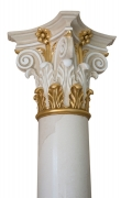 Gilded capital of white scagliola column ( 2 / 2 )